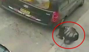Santa Anita: dueño de pollería termina gravemente herido por bala perdida