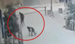 Agente se recupera en Hospital de la Policía tras ser baleado en SMP