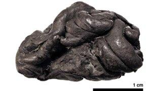 """Científicos descubren en un """"chicle"""" de hace 6 mil años, el ADN de la persona que lo mascaba"""