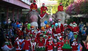 Navidad 2019: elefantes vestidos de Santa Claus visitaron colegio de Tailandia