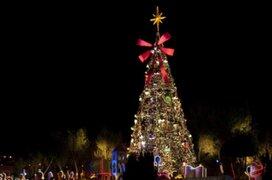 """Así es el árbol de Navidad considerado el """"más peligroso del mundo"""""""