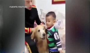 VIDEO: perro defiende a niño que supuestamente iba ser castigado