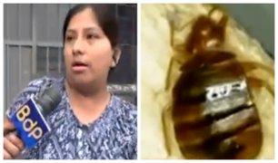 Madre denuncia que bus repleto de chinches afectó salud de su bebé