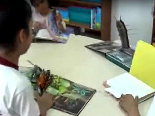 Comas: Inauguran biblioteca en colegio Santa Rosa