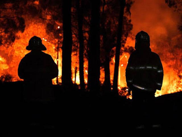 Incendios forestales siguen incontrolables en Australia