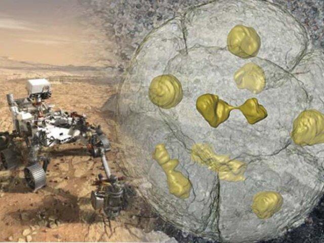 NASA buscará fósiles microscópicos en Marte para el 2021