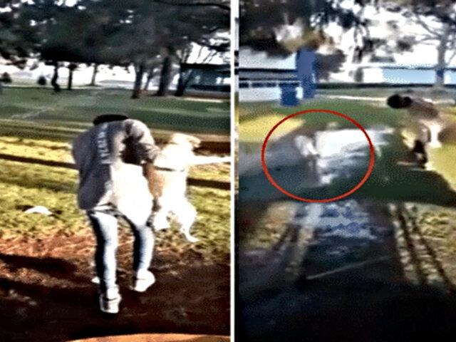 Maltrato animal: joven agrede a perro dentro de universidad
