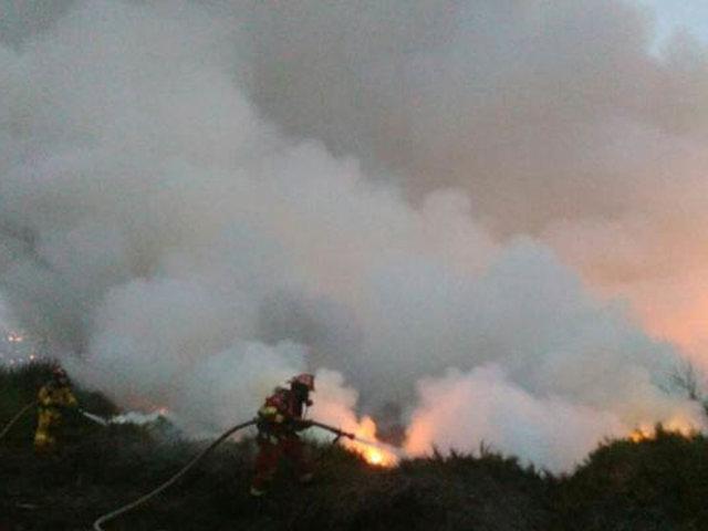 Chorrillos: reportan incendio forestal  en los pantanos de Villa
