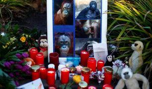Alemania: se entregan mujeres que provocaron incendio en zoológico