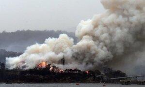 Devastadoras cifras: esta es la dimensión de los incendios forestales en Australia