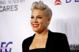 La cantante Pink dona medio millón de dólares para combatir los incendios en Australia