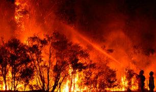 Australia: cifra de muertos por incendios forestales ascendió a 25 víctimas