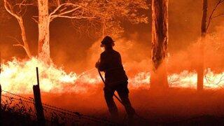 Incendios en Australia: famosos se unen para recaudar fondos y mitigar el fuego