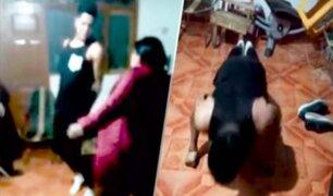Cajamarca: delincuente es azotado por robar una motocicleta