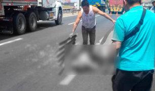 Panamericana Sur: camión atropella y mata a policía de tránsito