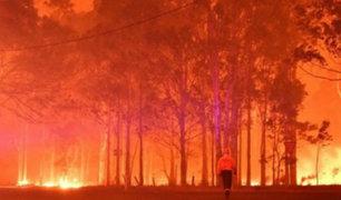 Australia: pronostican lluvias que apagarían incendios forestales