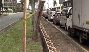 San Isidro: vecinos se quejan por construcción de ciclovía que eliminaría áreas verdes