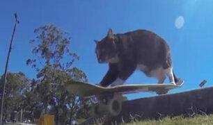 Australia: gata skater causa furor con su increíble talento