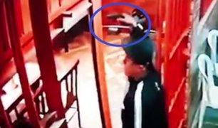 Delincuentes armados asaltaron pollería en San Martín de Porres