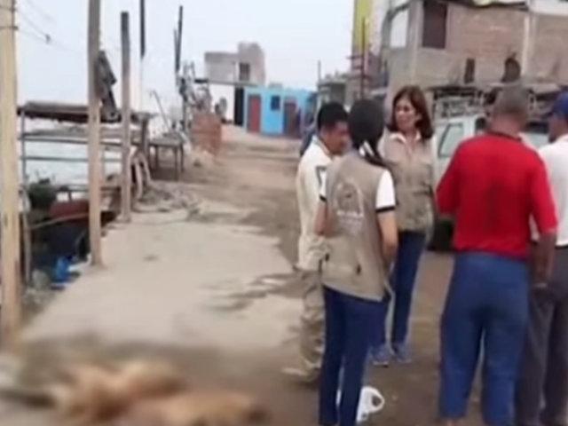 Chancay: ladrones envenenan a ocho perros para poder robar casas