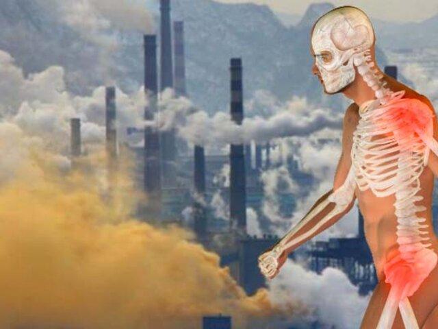 Estudio revela que la contaminación del aire afecta a la calidad de los huesos