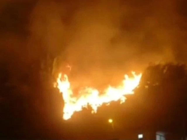 Chaclacayo: incendio forestal dejó como saldo un bombero herido