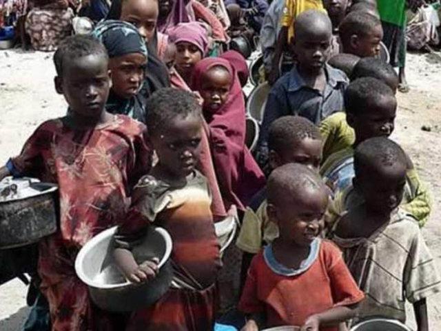 ONU alerta que unos 45 millones de africanos padecen hambre
