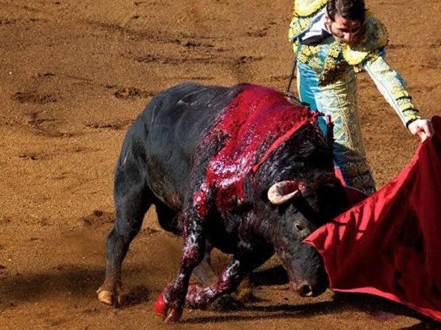 TC transmitirá en vivo audiencia que analizará demanda contra corrida de toros