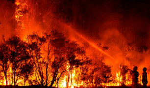 Bomberos evitan que incendios lleguen hasta la capital de Australia