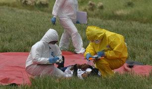 China: cifra de fallecidos por el coronavirus ya supera los 630
