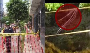 Peligro latente: vecinos de Breña aterrados por cables expuestos en sus jardines