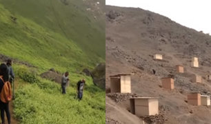 Lomas de Villa María: MML exige retiro de traficantes de terrenos en área natural