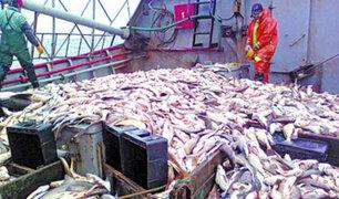 Coronavirus: pesqueras peruanas dejarán de exportar a China
