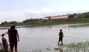 Tumbes: rescatan a menores obligados a trabajo forzoso