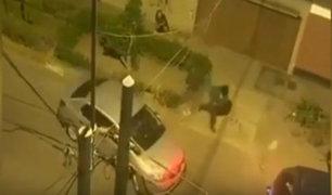 San Luis: delincuentes asaltan a familia que iba en auto