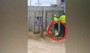 Perro murió tras ser golpeado y asfixiado por policías y su dueño en Colombia