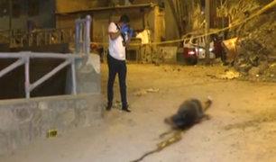 Surco: abandonan cadáver de hombre en un costal