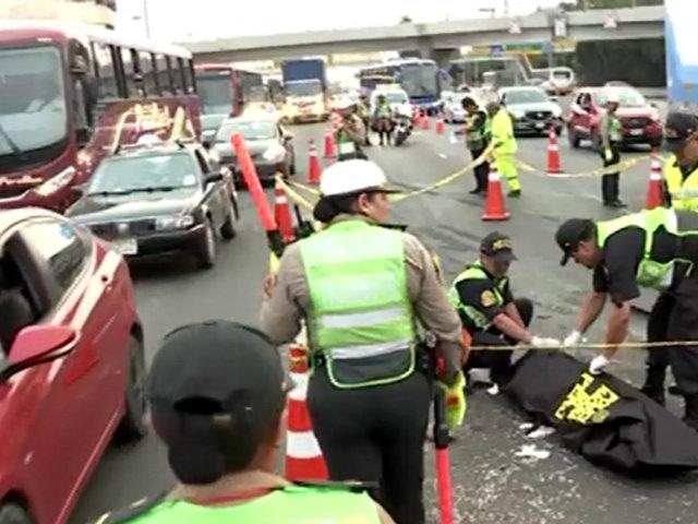 Panamericana Sur: chofer de combi es atropellado cuando cambiaba llanta