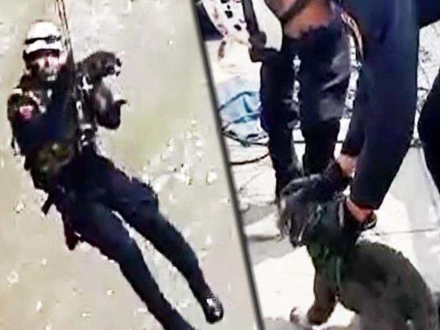 Policía rescató a perro en un islote del Río Rímac