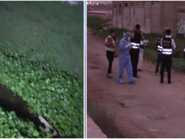 Chorrillos: hallan cuerpo de extranjera en los Pantanos de Villa