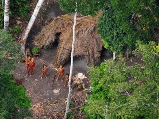 Brasil: advierten en la ONU sobre el creciente riesgo para los indígenas aislados