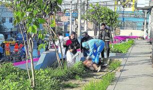 Arequipa: delincuentes mataron a obrero de varias cuchilladas para robarle