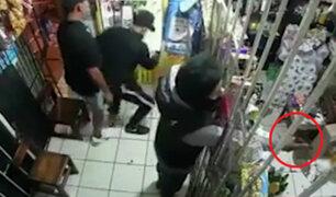 SMP: delincuentes encapuchados y armados asaltaron bodega