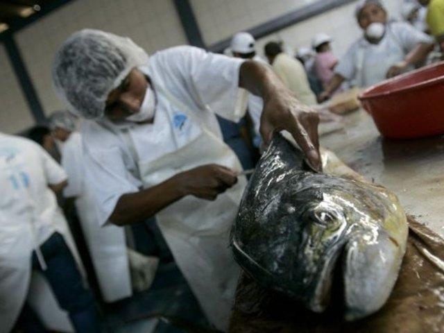 Comerciantes reducen el precio del pescado en terminal de Villa María del Triunfo