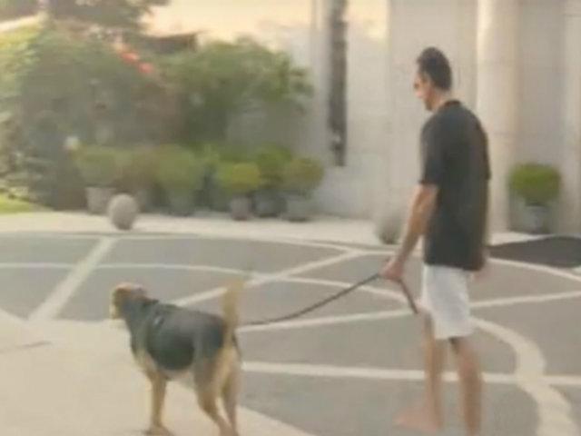 Estado de emergencia: vecinos de San Isidro incumplen orden y sacan a sus mascotas