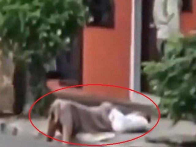 VIDEO: nadie ayuda a mujer desmayada por miedo a contagiarse de coronavirus