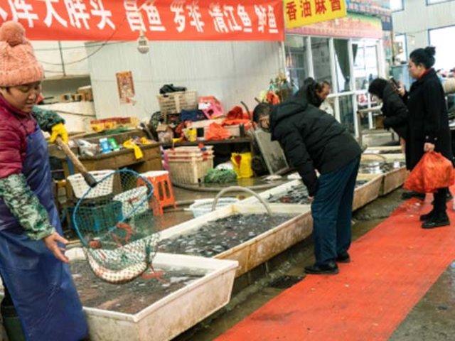 En China continúan vendiendo murciélagos para comer pese al coronavirus, según Daily Mail