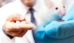 Científicos estadounidenses crean una vacuna que logra neutralizar el coronavirus en ratones