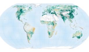 Estudio de la NASA revela que la Tierra tiene más espacios verdes que hace 20 años