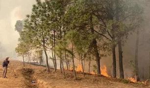 México: incendio forestal deja seis muertos y varios desaparecidos